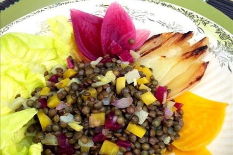 Green Lentil-Beet-Braised Fennel Salad with Cider Vinaigrette For a Crowd